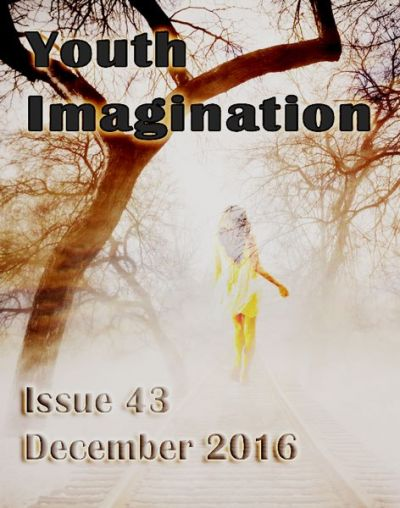 Issue 43 Dec 2016
